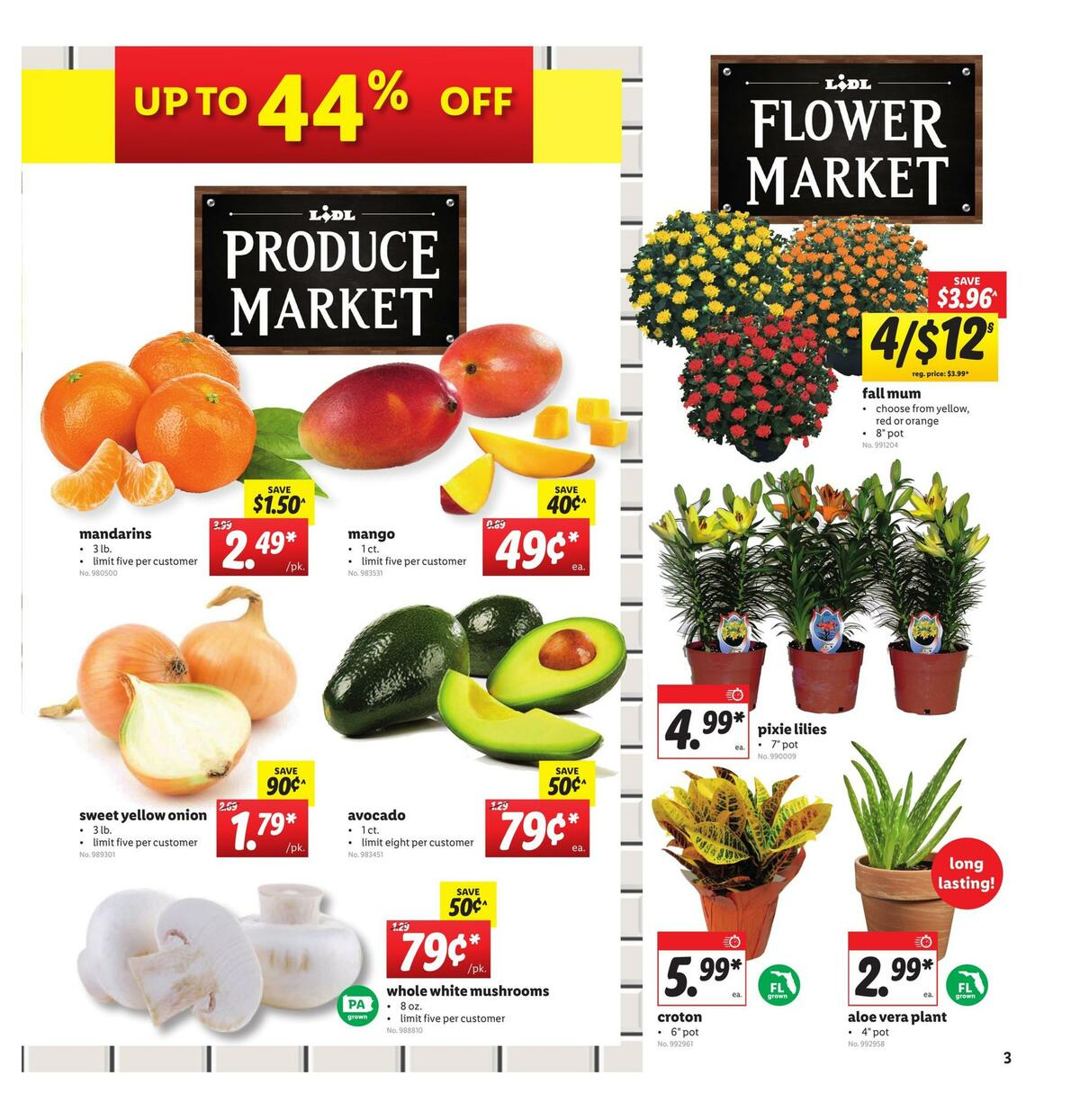 LIDL Weekly Ad from August 19