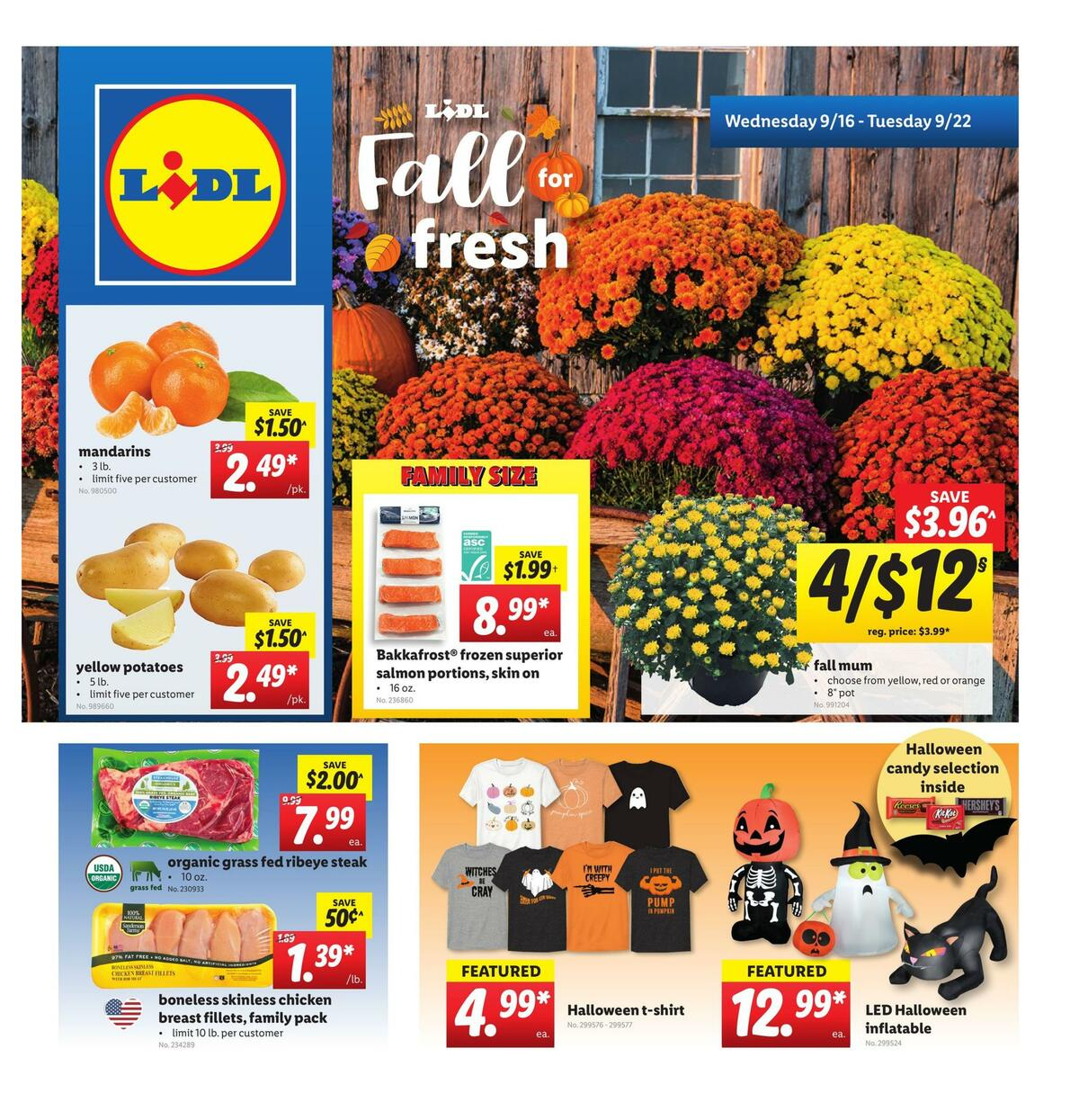 LIDL Weekly Ad from September 16